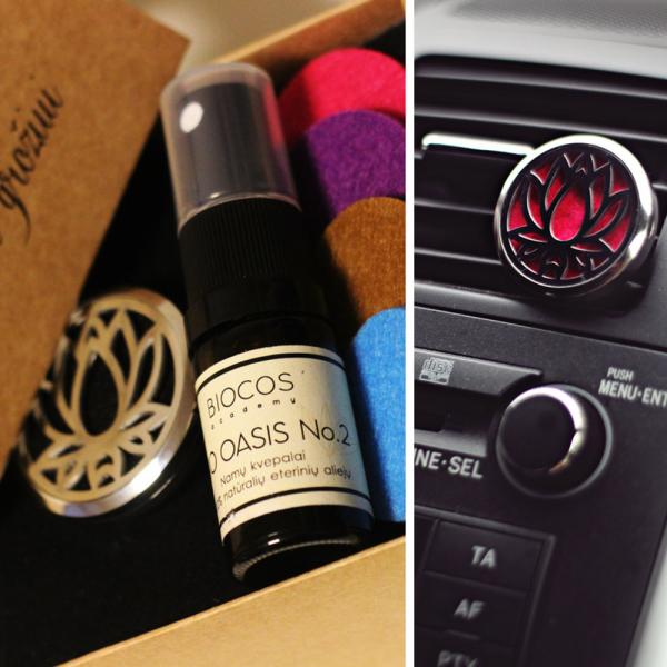 Aromatherapy kit for car: diffuser + BIO OASIS fragrance